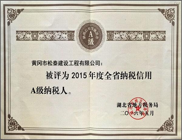 A级纳税人-2016
